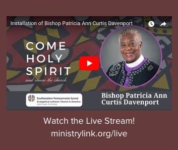 Live Stream Information